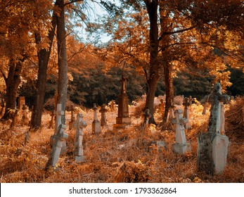 Old abandoned cemetery on a sunny autumn morning. golden autumn in the cemetery.