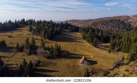 old abandoned cottage and forest landscape