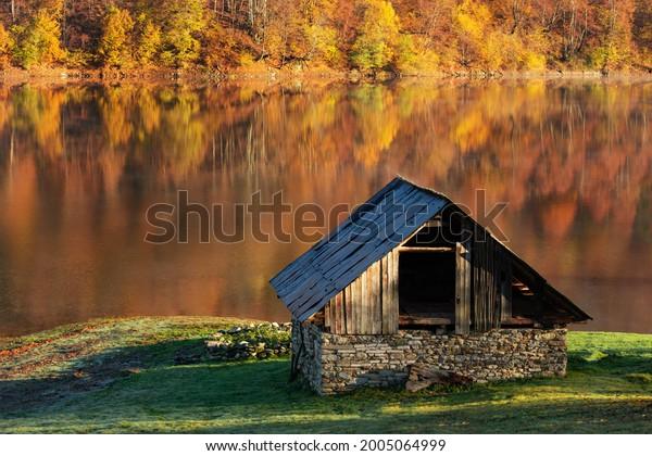old-abandoned-house-lake-shore-600w-2005
