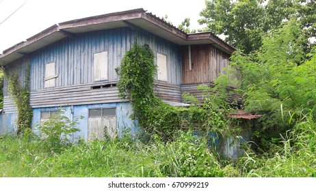 OLD ABANDONED HOUSE LOCATED ON OVERGROWN GREEN GRASSLAND , OVERCAST SKY BACKGROUND