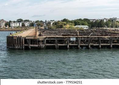 Old Abandoned Pier in Boston - massachusetts USA wooden broken dock