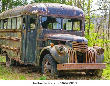 An old abandoned run down bus in the grass and trees