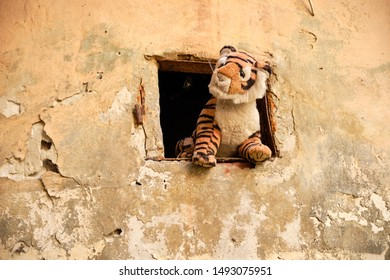 Old abandoned Stuffed tiger sticking out window from animals in the Yard of Lost Toys, in Lviv Ukraine