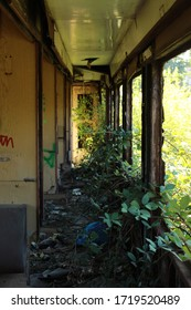 Old abandoned train. Old train wagons.