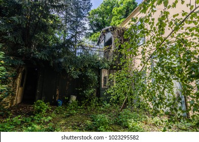 old abandoned villa in the forest