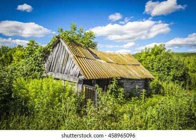 Old abandoned wooden hut, overgrown grass on a bright sunny summer day
