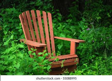 Old Adirondack Chair in an Overgrown Wildflower Garden