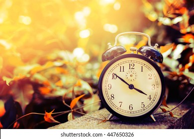 Old alarm clock between yellow leaves in the nature and summer season sun light