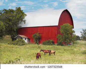 Old Amish Barns in Clare County Michigan