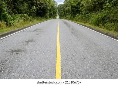 old asphalt road in the forest