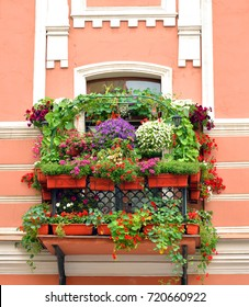 Old balcony overgrown with flowers in the center of St.Petersburg, Russia.