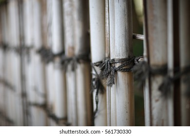 Old bamboo fence connected with black twine.