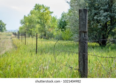 old barbed wire fence on weathered wood post on edge of farm property