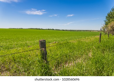 Old barbed wire fence and a vast green field in Alberta, Canada