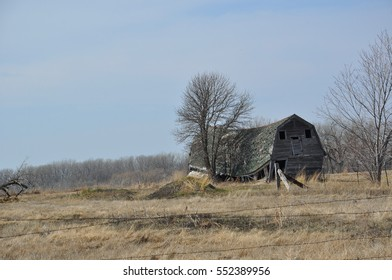 Old Barn Falling Down After Many Years of Standing Tall - Minnesota Landscape