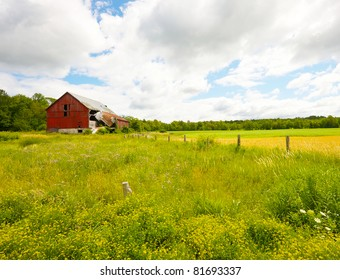 Old barn surrounded by beautiful golden and green fields, and a distant forest in the summer.  Wide angle.