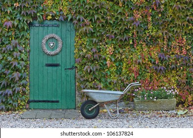 An old barn with a wheelbarrow in front is covered with beautiful colored ivy during autumn