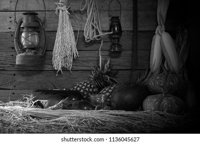 In the old barn which has pile of straw on the floor and dim light /Select focus and still life image and adjustment color black and white
