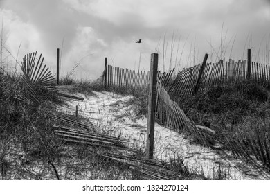 Old Beach Scene