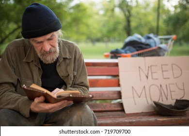 Old beardy man with no home reading a book. Homeless male reading, begging for money on card board.