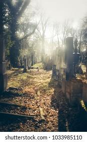 Old beautiful catholic cemetery in Munich