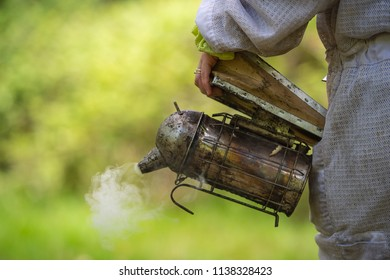 Old bee smoker, Beekeeping tool, Sring in an apiary, France