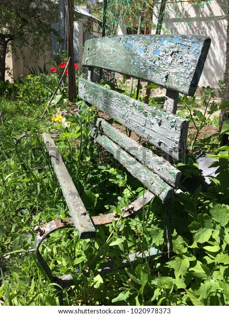 Brilliant Old Bench Thicket Grass Bench Garden Stock Photo Edit Now Cjindustries Chair Design For Home Cjindustriesco