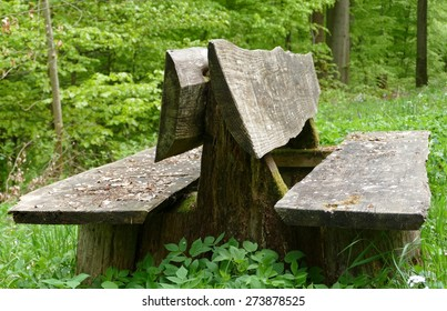 Old bench in the woods