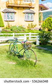 Old bicycle on green grass, Thailand.