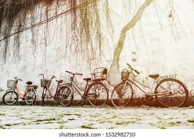 Old bicycles parked near the wall of cement and The top has a dry vine hanging down.