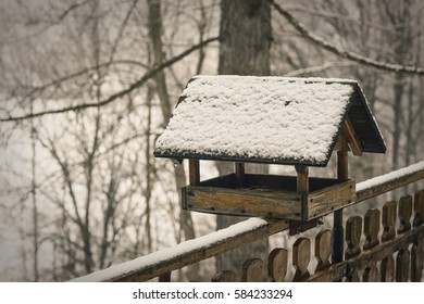 Old birdhouse on brench covered snow in winter