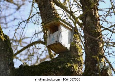 Old birdhouse on the tree