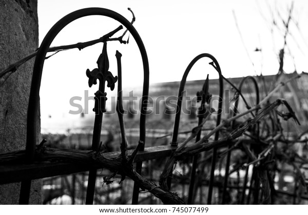 Old Black Cast Iron Fence Spikes Stock Photo Edit Now