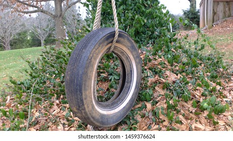 An old, black tire swing.