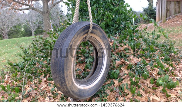 An old, black tire swing.