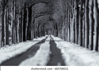 Old black and white photo of tire tracks in snowy rural road.