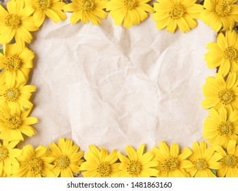 Old blank brown grunge  wrinkle  paper texture and colorful flower yellow petal blooming frame or  sweet singapore daisy texture top view patterns for natural background , copy space