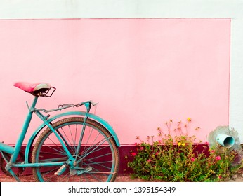 Old blue bicycle and flowers in front of the pink wall, using colorful effect (Tint) edit the image and lomo style concept.