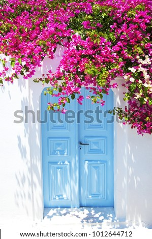e3da5d9fc6f8 Old Blue Door Pink Flowers Traditional Stock Photo (Edit Now ...