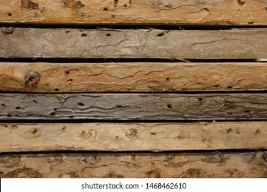 Old boards has been eaten by woodworm