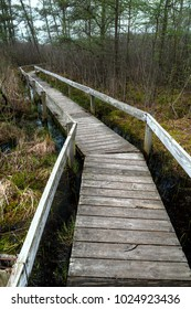 Old boardwalk trail in Volo Bog nature preserve in northern Illinois.
