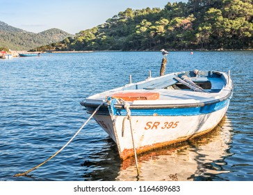 Old boat and seagull on freshwater lake on Mljet island, Croatia