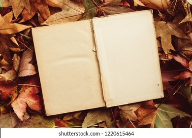 Old book and autumn leaves, fall season concept