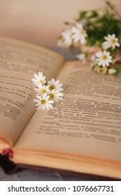The old book and bouquet of camomiles lie on a wooden table. Vintage Style