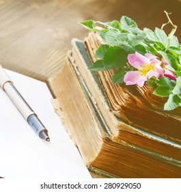 Old books blank paper flowers wild stock photo royalty free old books blank paper flowers of wild roses in vintage style selective focus mightylinksfo