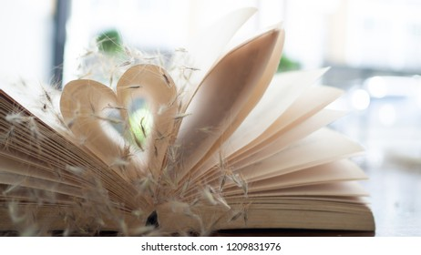 Old books take a paper page of it make heart shaped. Concept  gradually understand and learn to care for the heart.