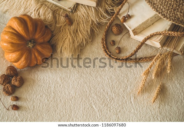 Old books and vintage straw bag on white warm plaid with pumpkin, wheat, physalis, acorns and walnut. Books and reading. autumn mood. Autumn time. cozy autumn decor. soft selective focus
