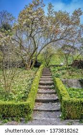 The Old Botanical Garden in Zurich in spring