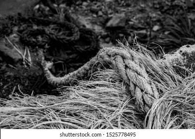 A Old Braided Rope Made of Sisal Used to Tie Fishing Boats