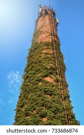 Old brick chimney with cellular antennas on top covered with a green climbing plant
